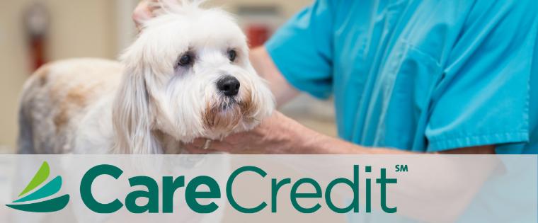 Use CareCredit to Finance Vet Visits