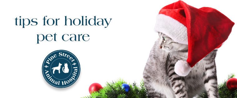 Tips for Holiday Pet Care